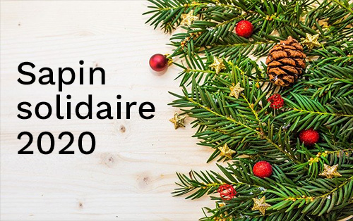 Projet « Sapin solidaire 2020 »